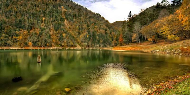 Sülüklü Göl Tabiat Parkı - Bolu - canlidostlar.com